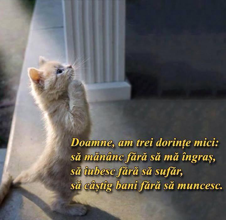 sursa: facebook.com